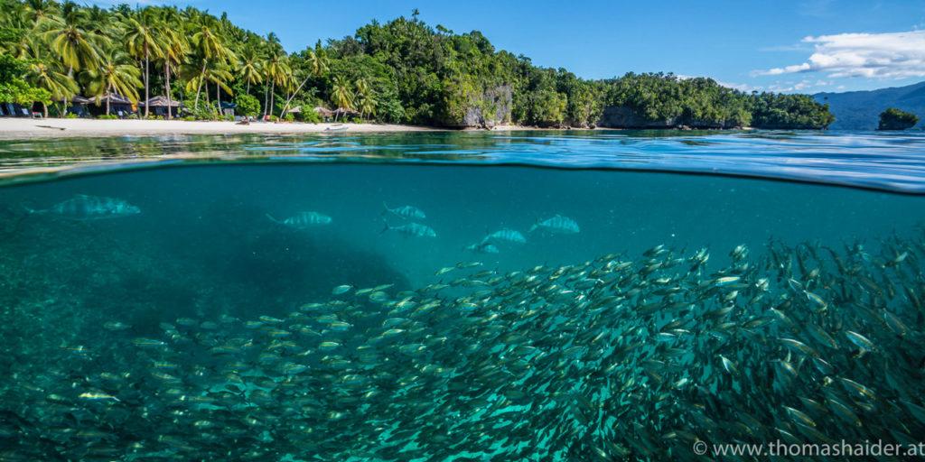 Submerging Triton Bay Dive Site