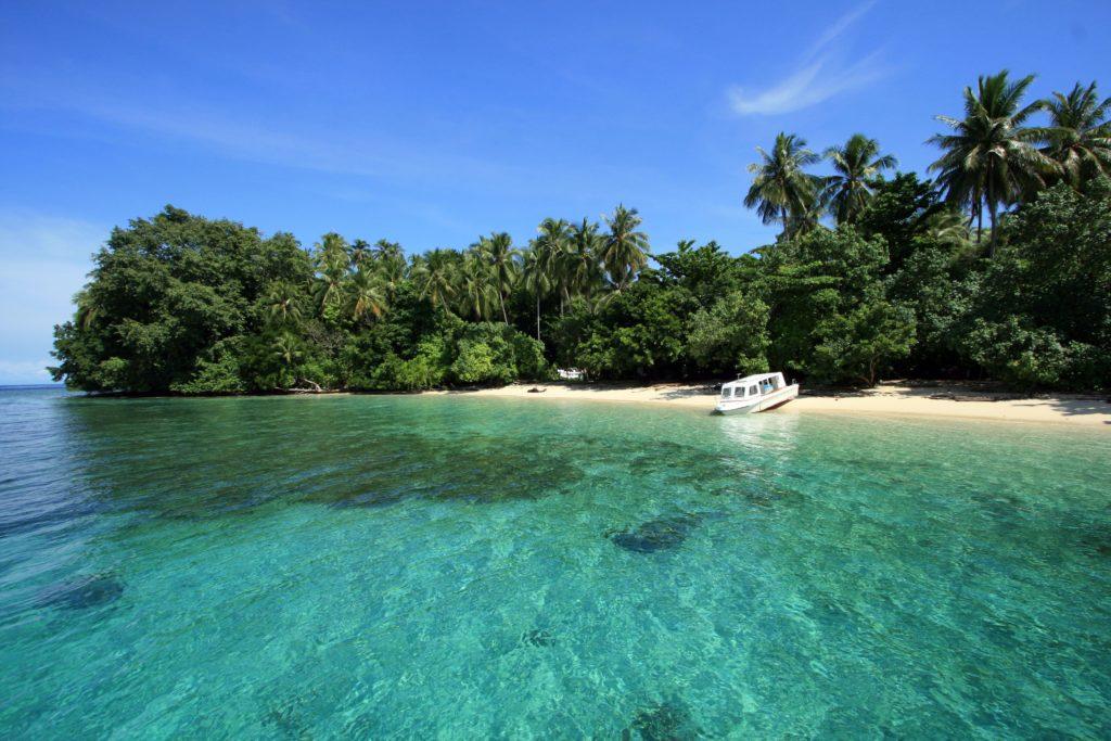 Stunning beach Cendrawasih bay