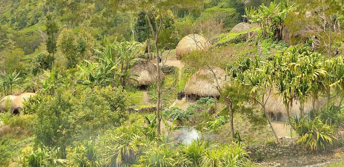 Kurima Village   Hello Papua