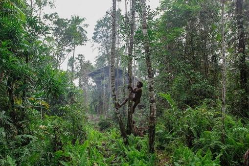 stone kuruwai expedition intensive tour west papua